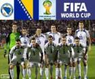 Sélection de Bosnie-Herzégovine, Groupe F, Brésil 2014
