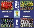 Groupe E, Brésil 2014