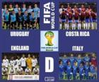 Groupe D, Brésil 2014