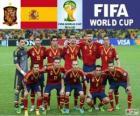 Sélection de l'Espagne, Groupe B, Brésil 2014