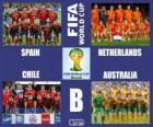 Groupe B, Brésil 2014