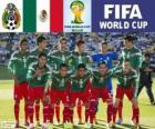 Sélection du Mexique, Groupe A, Brésil 2014