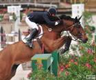 Cheval et cavalier passant un obstacle à un concours de saut