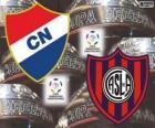 Club Nacional du Paraguay vs San Lorenzo de Almagro, de l'Argentine. Finale Copa Libertadores 2014
