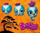 Petit oiseau Zooble de Petagonia