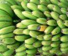 Bananes vertes et jaune