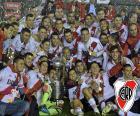 River Plate, Copa Libertadores 15