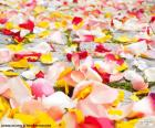 Pétales de rose, mariage