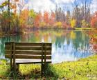 Banque de bois près de l'étang par une journée ensoleillée d'automne