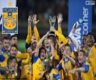 Tigres UANL, Mexique 2015