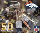 Broncos, champion Super Bowl 2016