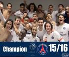 PSG champion 2015-2016