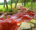 Paysage avec une rivière rouge