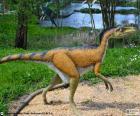 Le Troodon avait un long cou, ses bras avaient 3 doigts avec des griffes et des pattes puissantes qui les ont rendus excellents coureurs. Mesurant environ 2 mètres de long, 1 de haut et pesait entre 27 et 45 kg