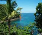 La mer d'une île tropicale