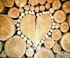 Tronc en forme de coeur