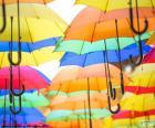 Parapluie de couleurs