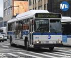 Bus urbain de New York