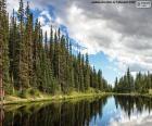 Lac Irene, Etats-Unis