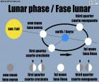 Phase lunaire