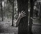 La forêt de l'horreur