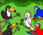 Cinq oiseaux de Julieta Vitali
