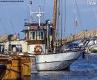 Pêche en bateau dans le port