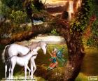 Licornes et fée