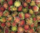 Fruits de ramboutan