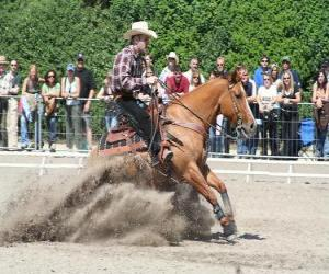 Puzzle Reining - équitation western - Ride Cowboy