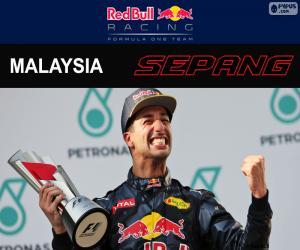 Puzzle Ricciardo, GP de Malaisie 2016