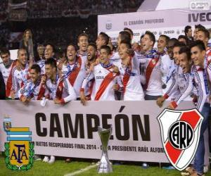 Puzzle River Plate, champion Torneo Final Argentinen 2014