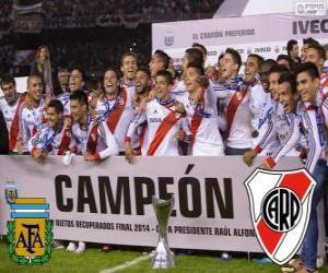 Puzzle River Plate, champion Torneo Final Argentinen 2014