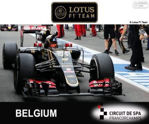 Puzzle Romain Grosjean, GP Belgique 2015