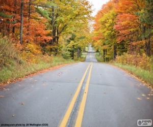 Puzzle Route automne