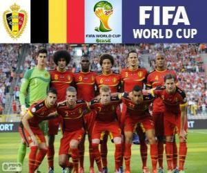 Puzzle Sélection de Belgique, Groupe H, Brésil 2014