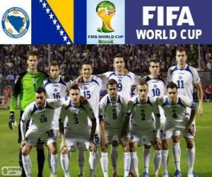 Puzzle Sélection de Bosnie-Herzégovine, Groupe F, Brésil 2014