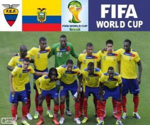 Puzzle Sélection de l'Equateur, Groupe E, Brésil 2014