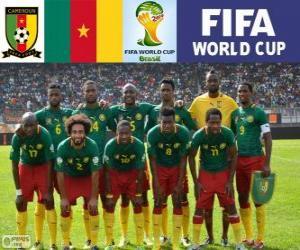 Puzzle Sélection du Cameroun, Groupe A, Brésil 2014