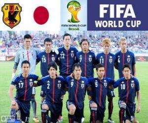Puzzle Sélection du Japon, Groupe C,  Brésil 2014