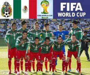 Puzzle Sélection du Mexique, Groupe A, Brésil 2014