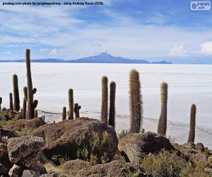 Puzzle Salar d'Uyuni, Bolivie