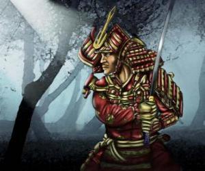 Puzzle Samurai avec la robe traditionnelle