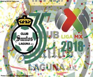 Puzzle Santos, Clausura 2018