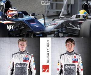 Puzzle Sauber F1 Team 2013