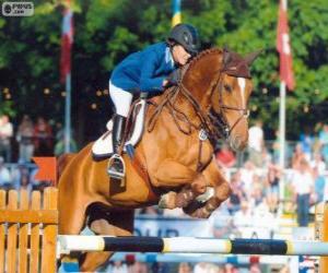 Puzzle Saut d'obstacles. Le cavalier et le cheval dans un saut