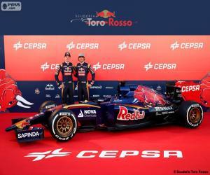 Puzzle Scuderia Toro Rosso 2015