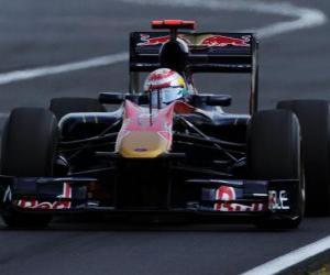 Puzzle Sébastien Buemi - Toro Rosso - Hungaroring 2010