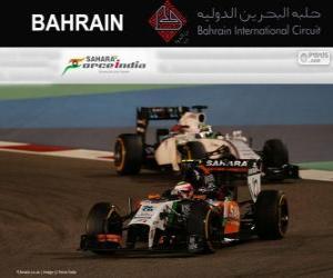 Puzzle Sergio Perez - Force India - Grand Prix Bahreïn 2014, 3e classés
