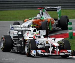 Puzzle Sergio Perez - Sauber - Sepang 2011